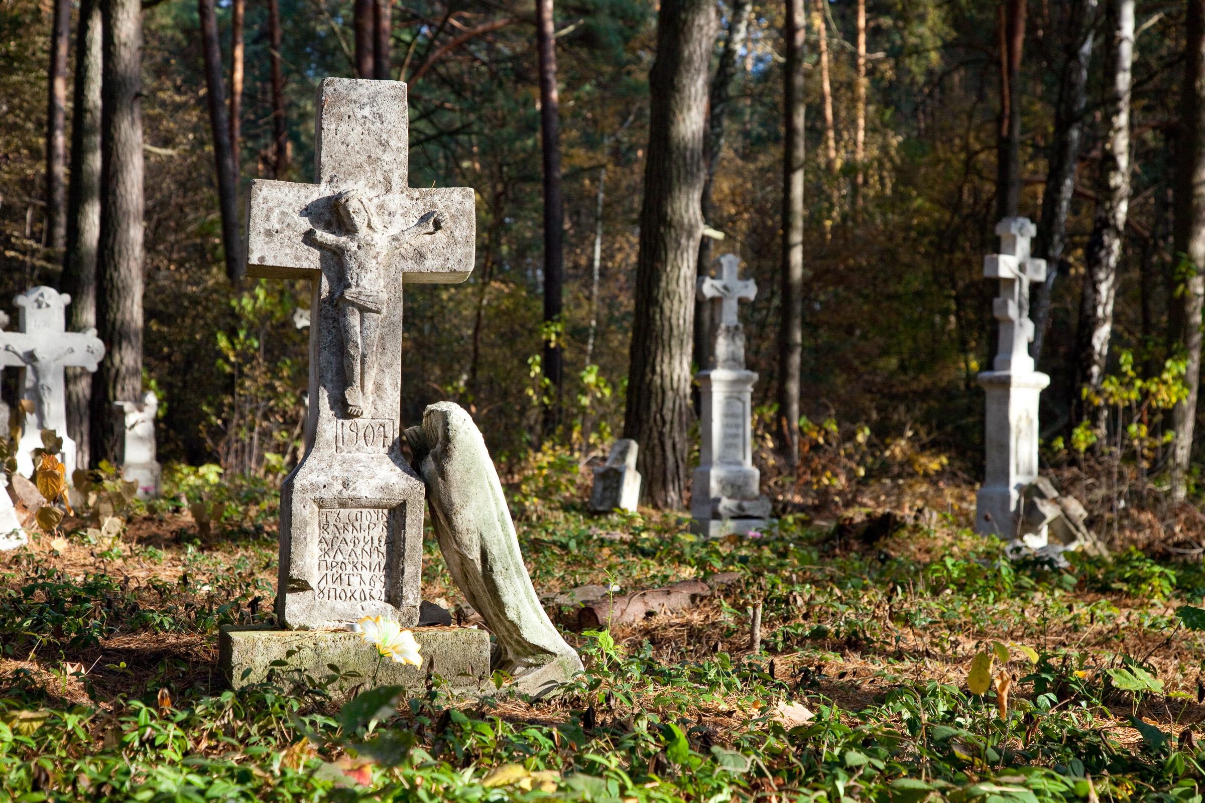 Roztocze. Cmentarz w lesie, a na nim nagrobki bedące dziełem kamieniarzy bruśnieńskich. fot. Krzysztof Zajączkowski