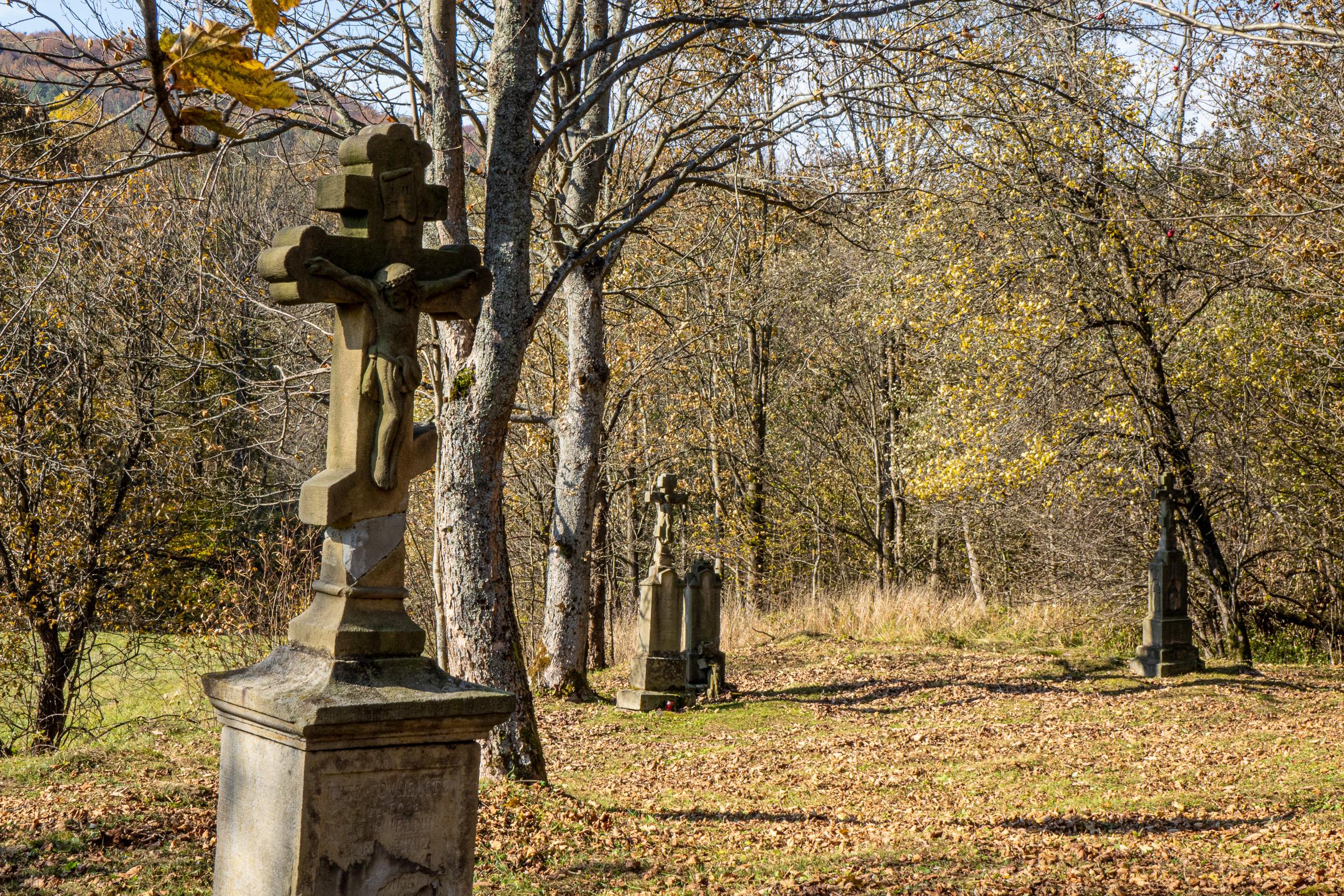 Beskid Niski. Cmentarz pozostały po miejscowości Żydowskie. fot. Krzysztof Zajączkowski
